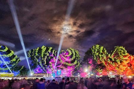 FESTIVAL VIEILLES CHARRUES 2019